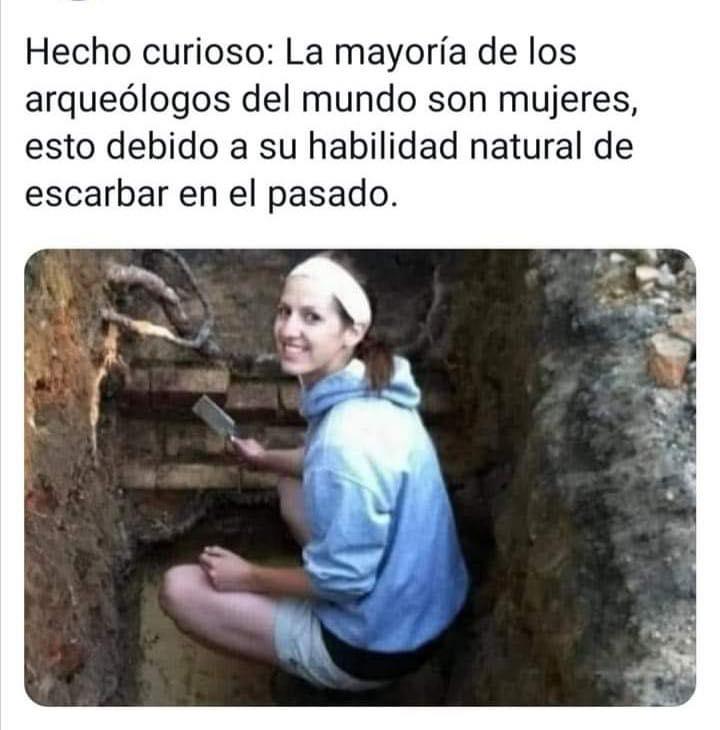 Hecho curioso: la mayoría de los arqueólogos del mundo son mujeres, esto debido a su habilidad natural de escarbar en el pasado.