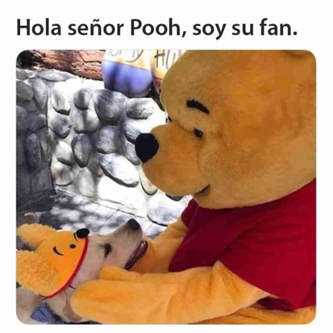 Hola señor Pooh, soy su fan.
