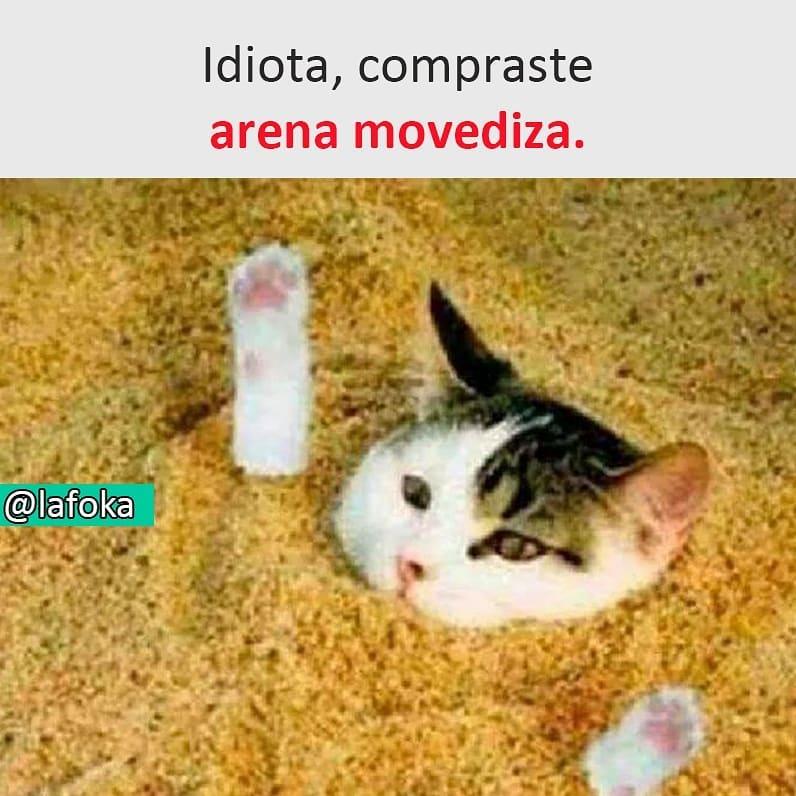 Idiota, compraste arena movediza.