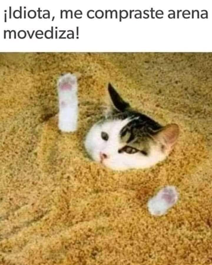¡Idiota, me compraste arena movediza!