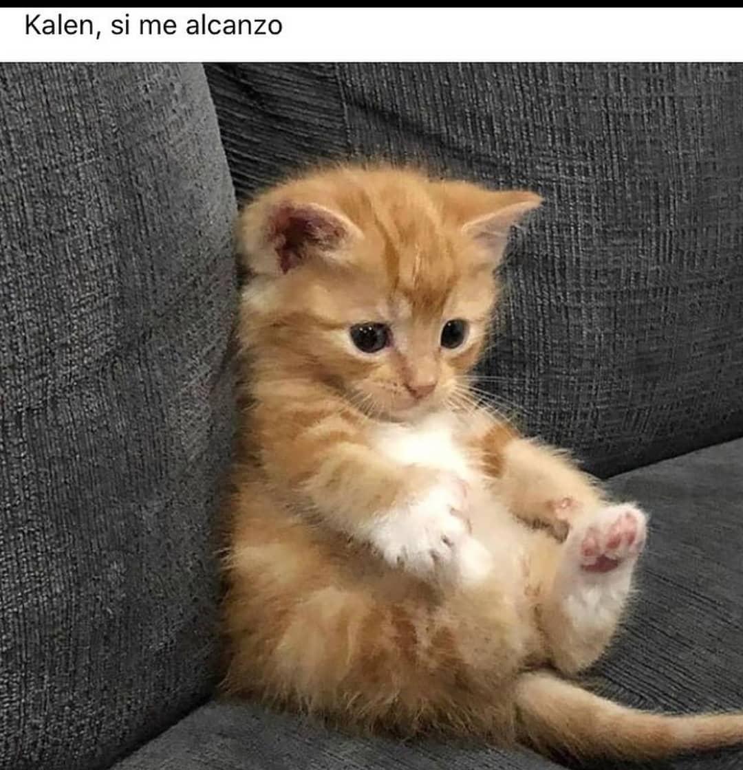 Kalen, si me alcanzo.