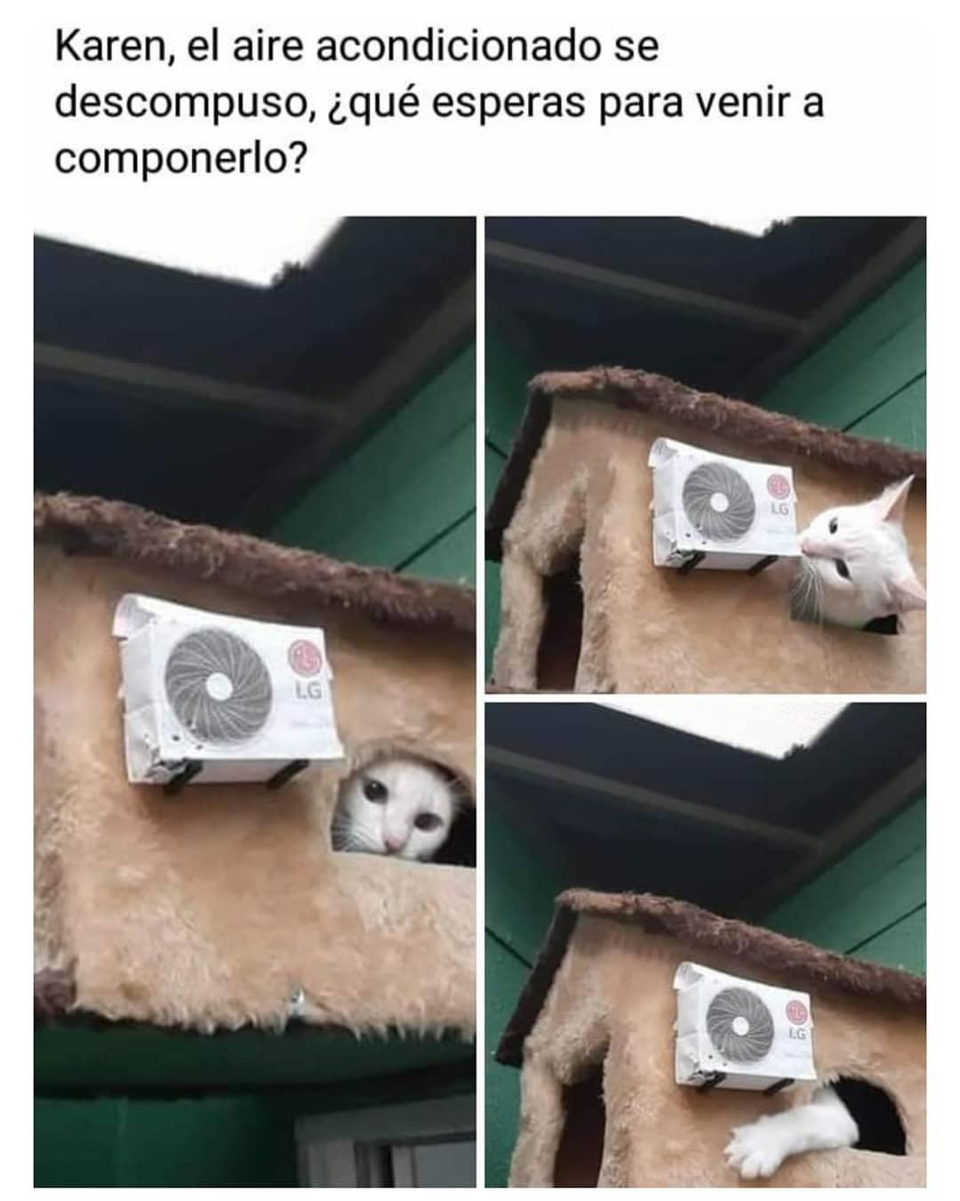 Karen, el aire acondicionado se descompuso, ¿qué esperas para venir a componerlo?