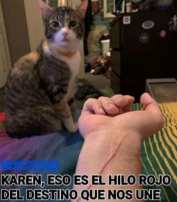 Karen, eso es el hilo rojo del destino que nos une.