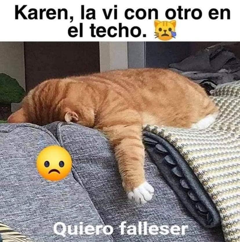 Karen, la vi con otro en el techo.  Quiero falleser.