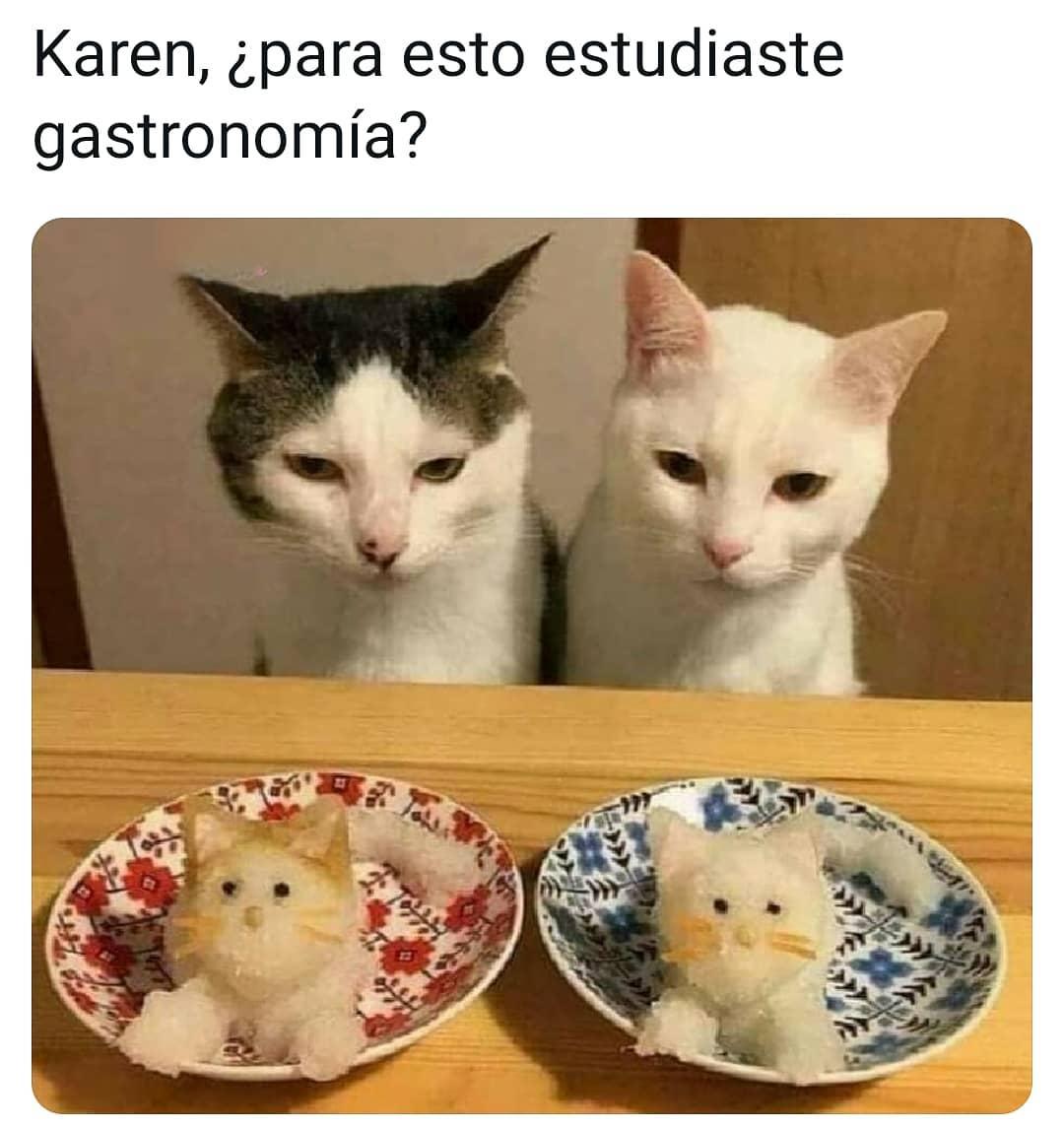 Karen, ¿para esto estudiaste gastronomía?