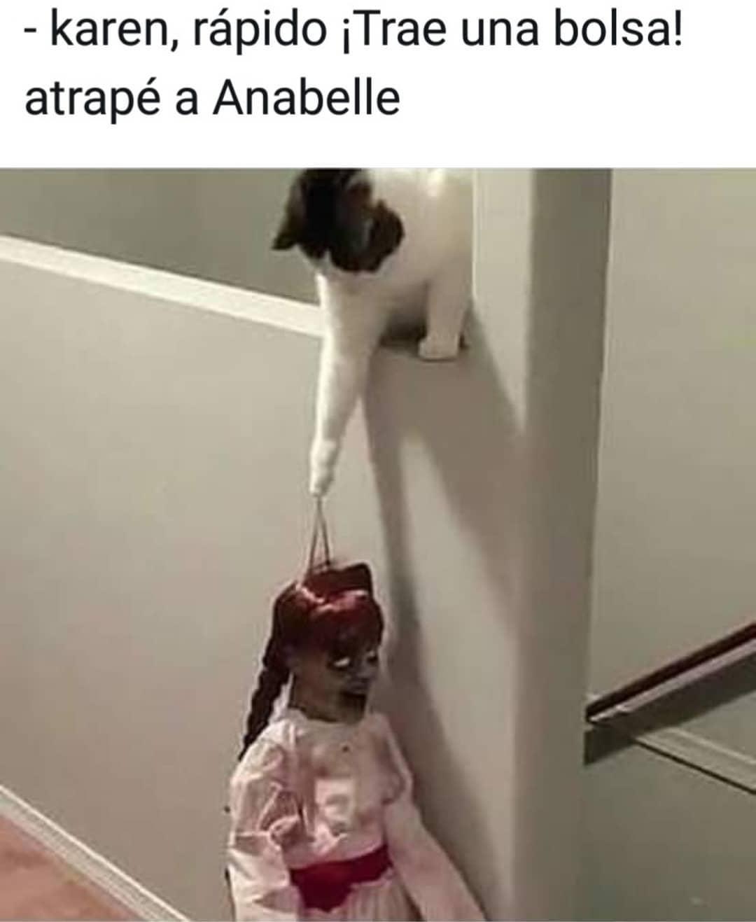 Karen, rápido. ¡Trae una bolsa! atrapé a Anabelle.