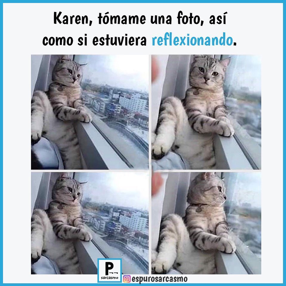 Karen, tómame una foto así como si estuviera reflexionando.