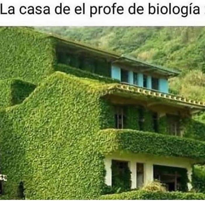 La casa de el profe de biología.