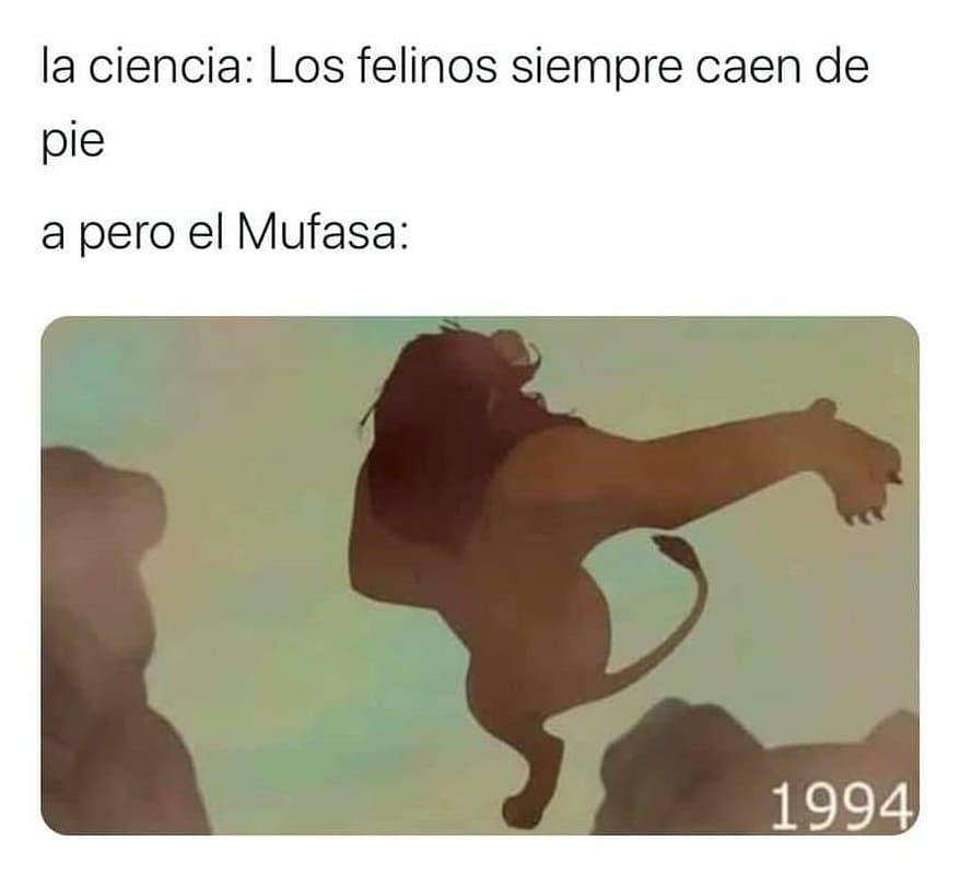 La ciencia: Los felinos siempre caen de pie... a pero el Mufasa: 1994.