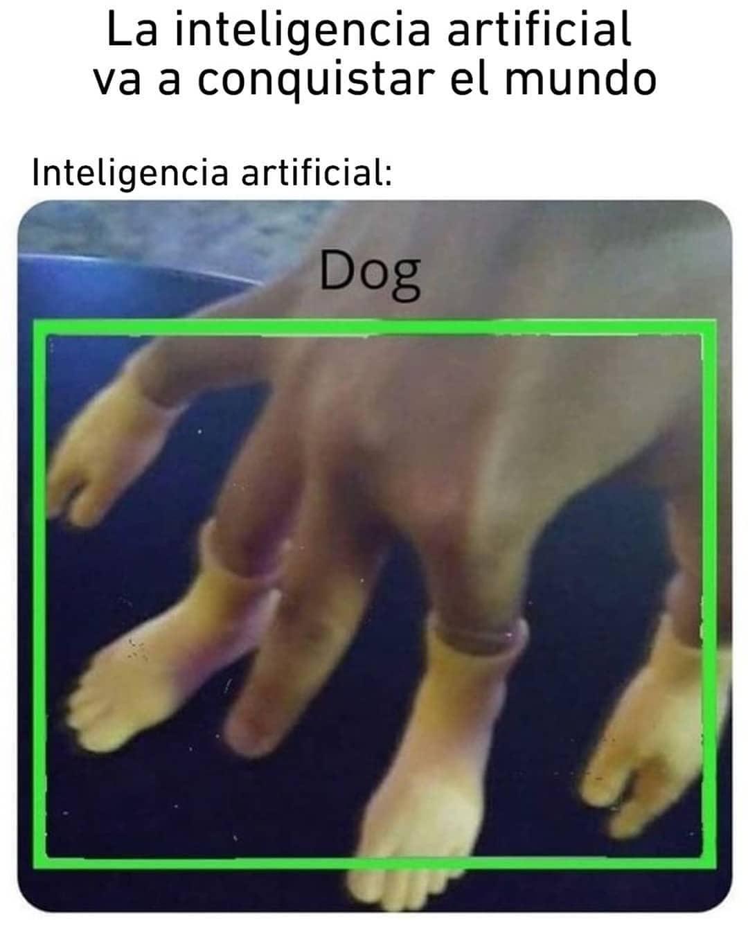 La inteligencia artificial va a conquistar el mundo.  Inteligencia artificial: Dog.