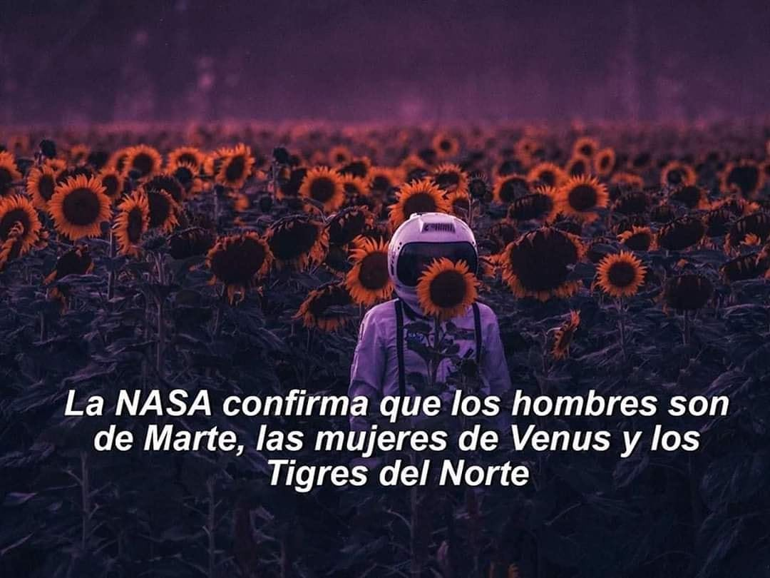 La NASA confirma que los hombres son de Marte, las mujeres de Venus y los Tigres del Norte.