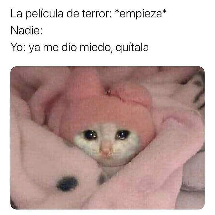La película de terror: *empieza*  Nadie:  Yo: ya me dio miedo, quítala.