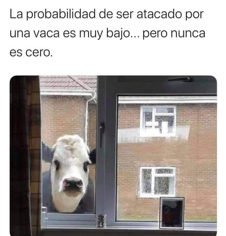 La probabilidad de ser atacado por una vaca es muy bajo... pero nunca es cero.