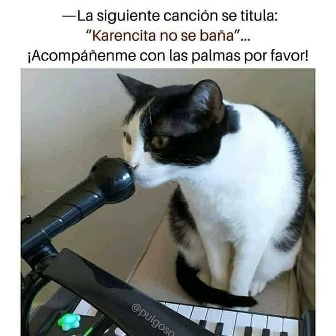 """La siguiente canción se titula: """"Karencita no se baña""""...  ¡Acompáñenme con las palmas por favor!"""