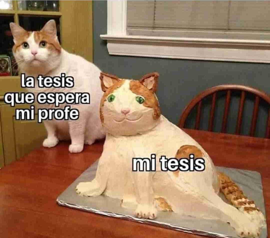 La tesis que espera mi profe.  Mi tesis.