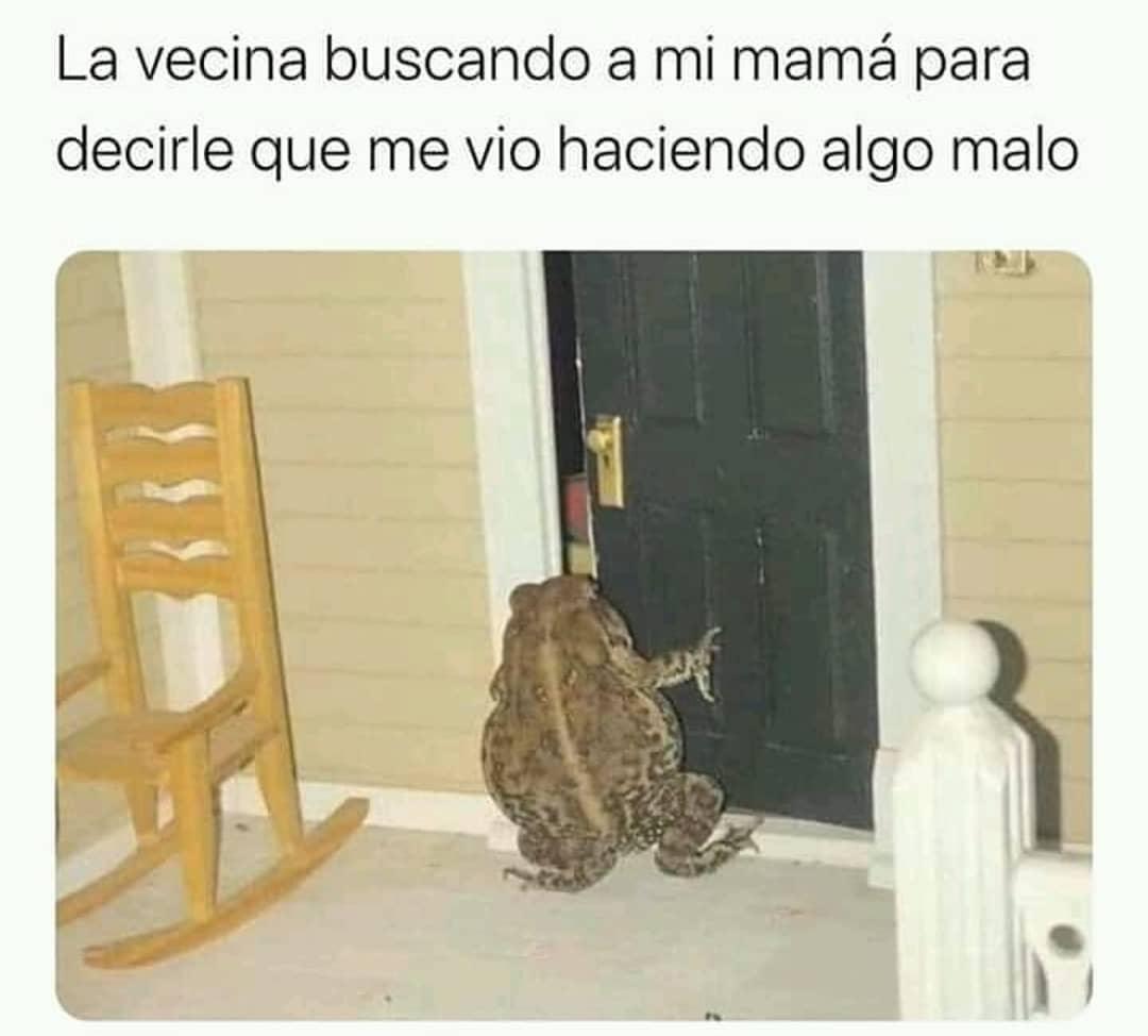 La vecina buscando a mi mamá para decirle que me vio haciendo algo malo.