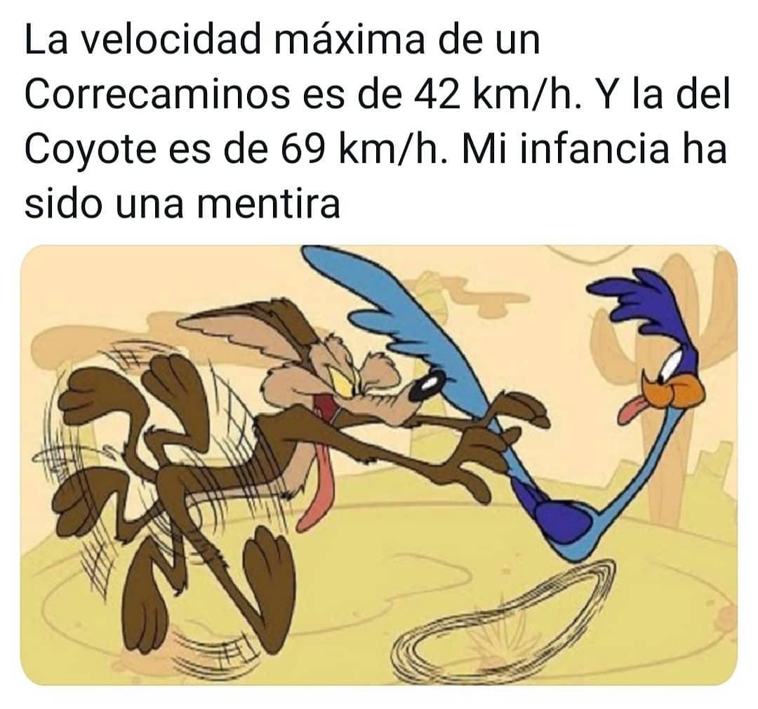 La velocidad máxima de un Correcaminos es de 42 km/h. Y la del Coyote es de 69 km/h. Mi infancia ha sido una mentira.