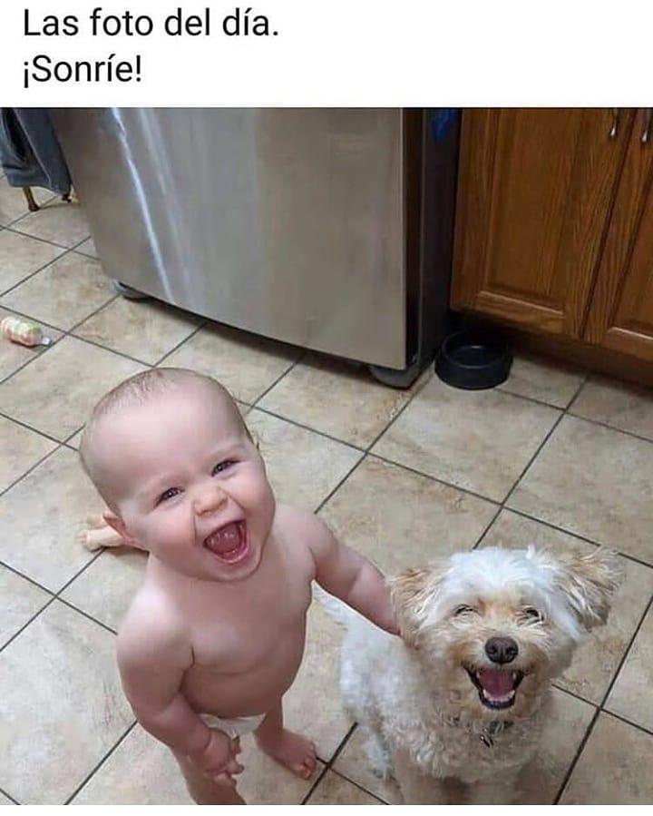 Las foto del día. ¡Sonríe!