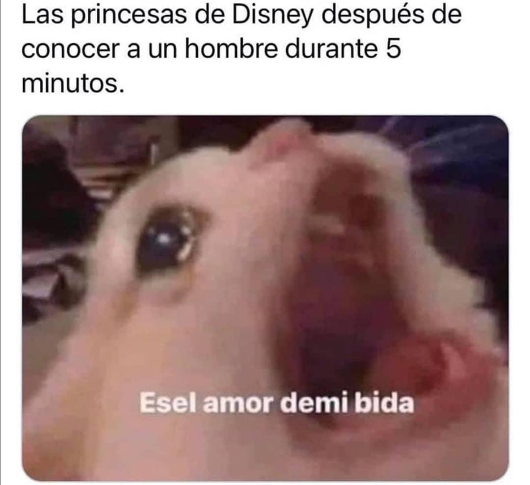 Las princesas de Disney después de conocer a un hombre durante 5 minutos.  Es el amor de mi vida.