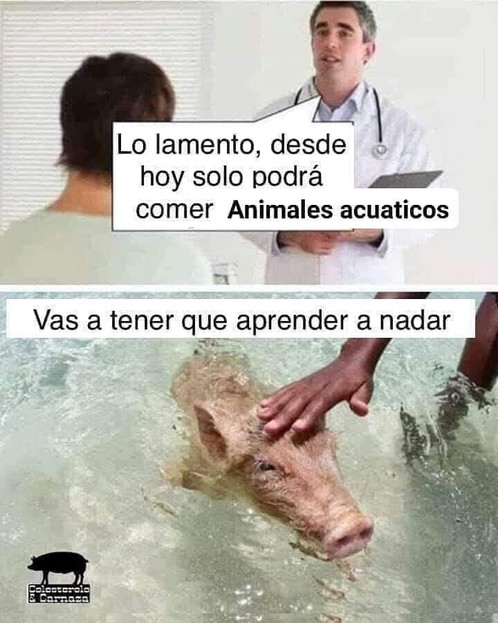 Lo lamento, desde hoy solo podrá comer animales acuáticos.  Vas a tener que aprender a nadar.