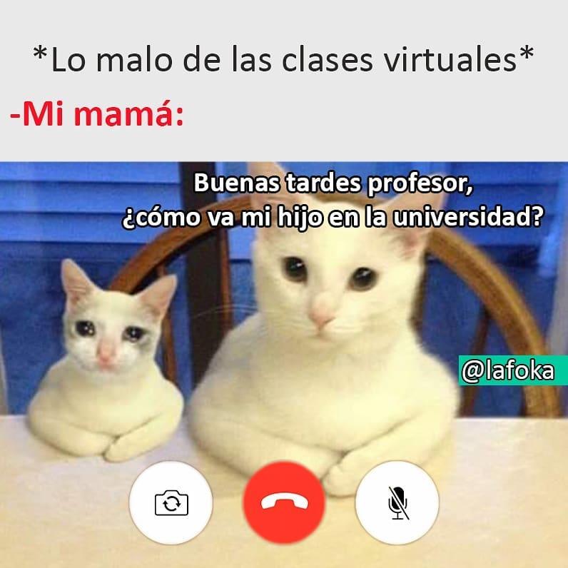 *Lo malo de las clases virtuales*  Mi mamá: Buenas tardes profesor, ¿cómo va mi hijo en la universidad?