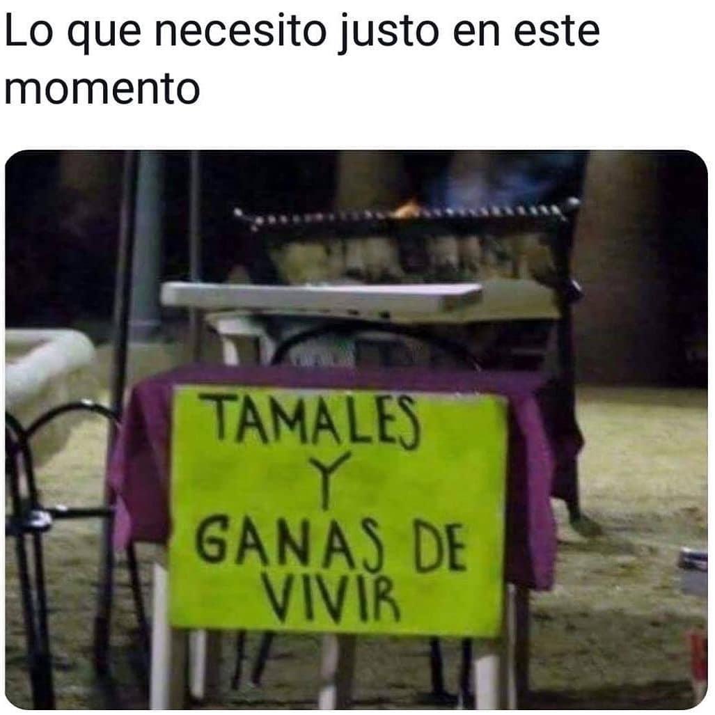 Lo que necesito justo en este momento: Tamales y ganas de vivir.
