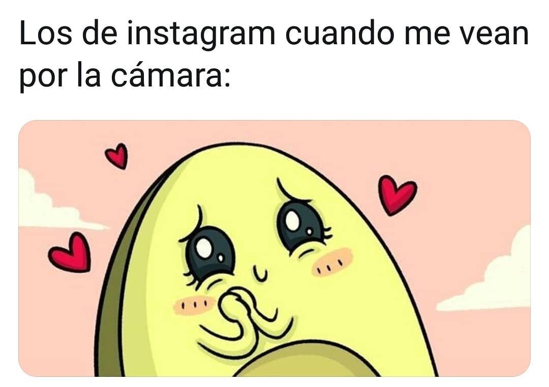 Los de Instagram cuando me vean por la cámara: