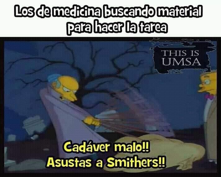 Los de medicina buscando material para hacer la tarea.  Cadáver malo!! Asustas a Smithers!!