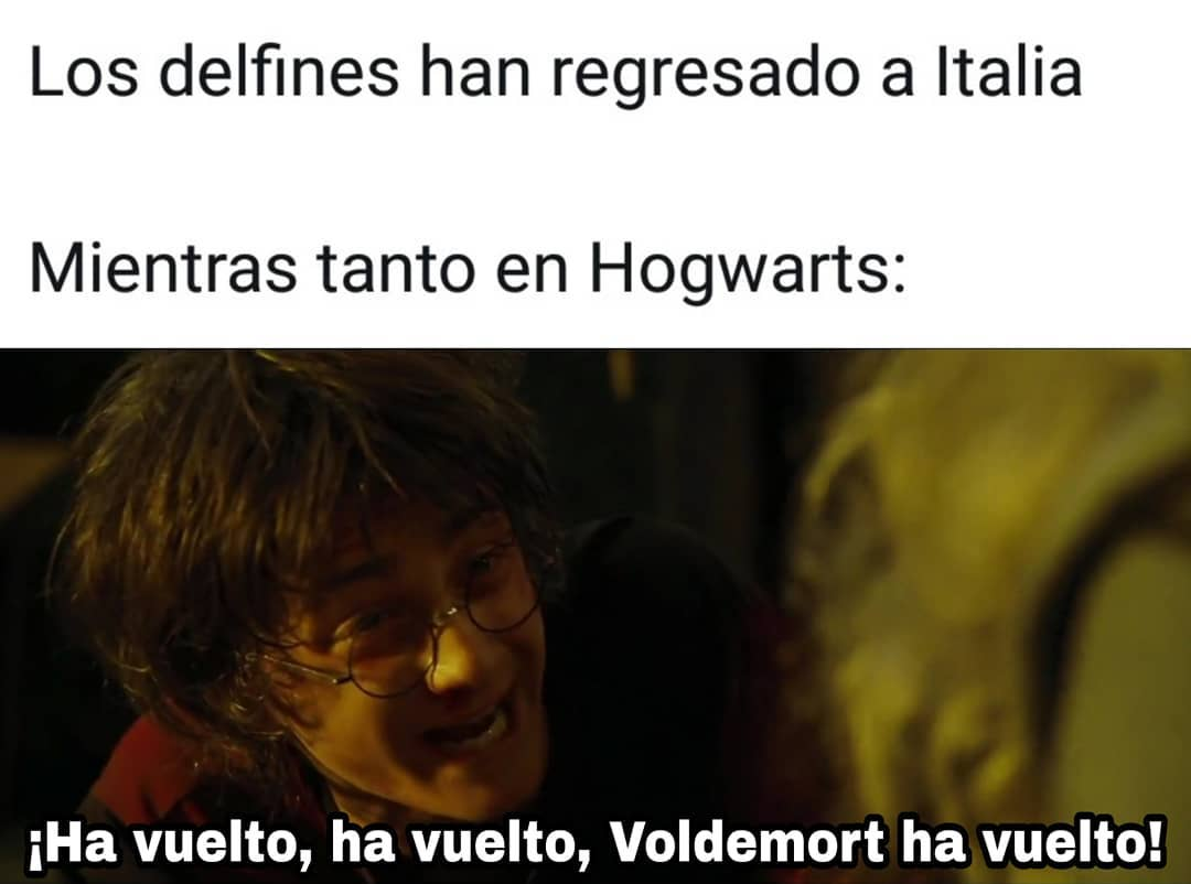 Los delfines han regresado a Italia.  Mientras tanto en Hogwarts:  ¡Ha vuelto, ha vuelto, Voldemort ha vuelto!