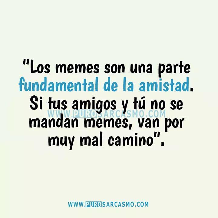 """""""Los memes son una parte fundamental de la amistad. Si tus amigos y tú no se mandan memes, van por muy mal camino""""."""