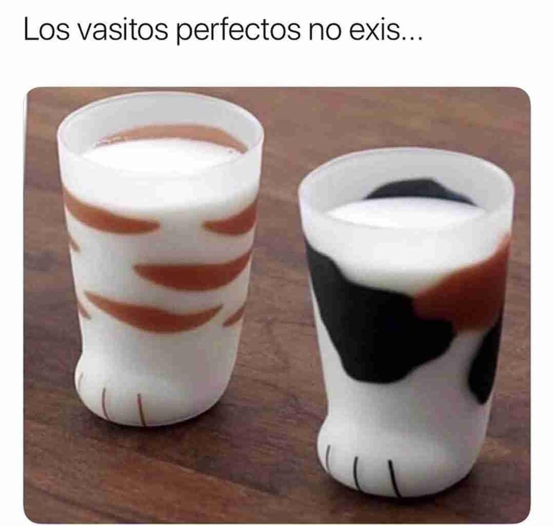 Los vasitos perfectos no exis...
