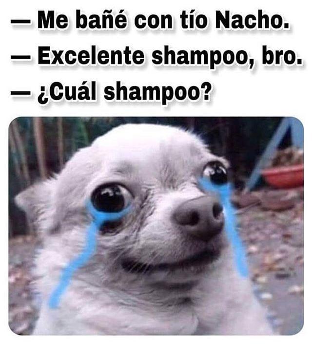 Me bañé con tío Nacho.  Excelente shampoo, bro.  ¿Cuál shampoo?