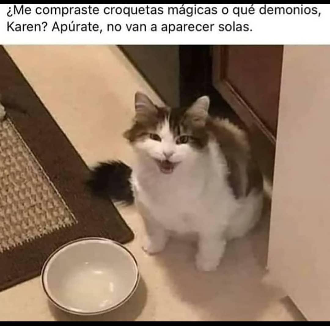 ¿Me compraste croquetas mágicas o qué demonios, Karen? Apúrate, no van a aparecer solas.
