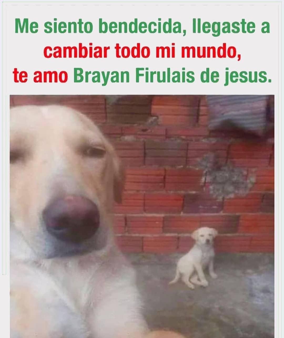 Me siento bendecida, llegaste a cambiar todo mi mundo, te amo Brayan Firulais de Jesus.