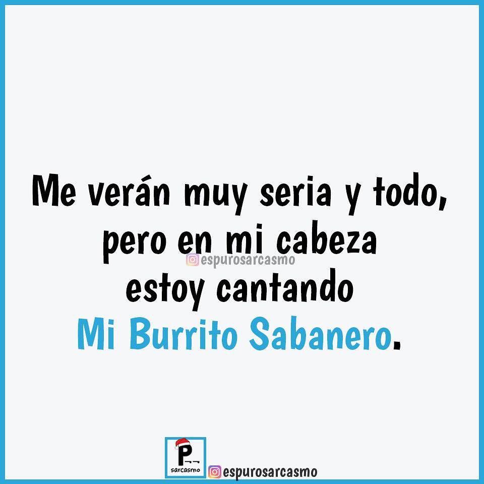 Me verán muy seria y todo, pero en mi cabeza estoy cantando Mi Burrito Sabanero.