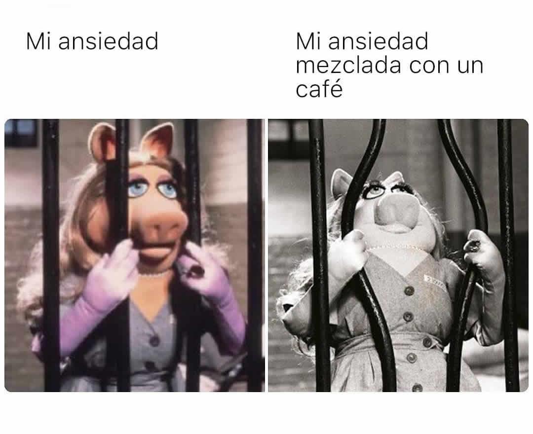 Mi ansiedad.  Mi ansiedad mezclada con un café.