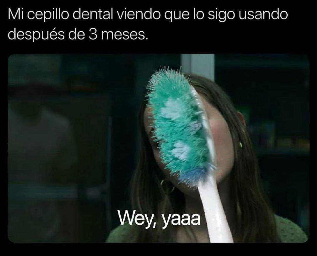 Mi cepillo dental viendo que lo sigo usando después de 3 meses.  Wey, yaaa.