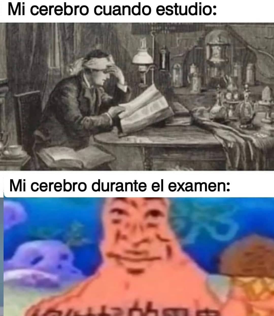 Mi cerebro cuando estudio: Mi cerebro durante el examen:
