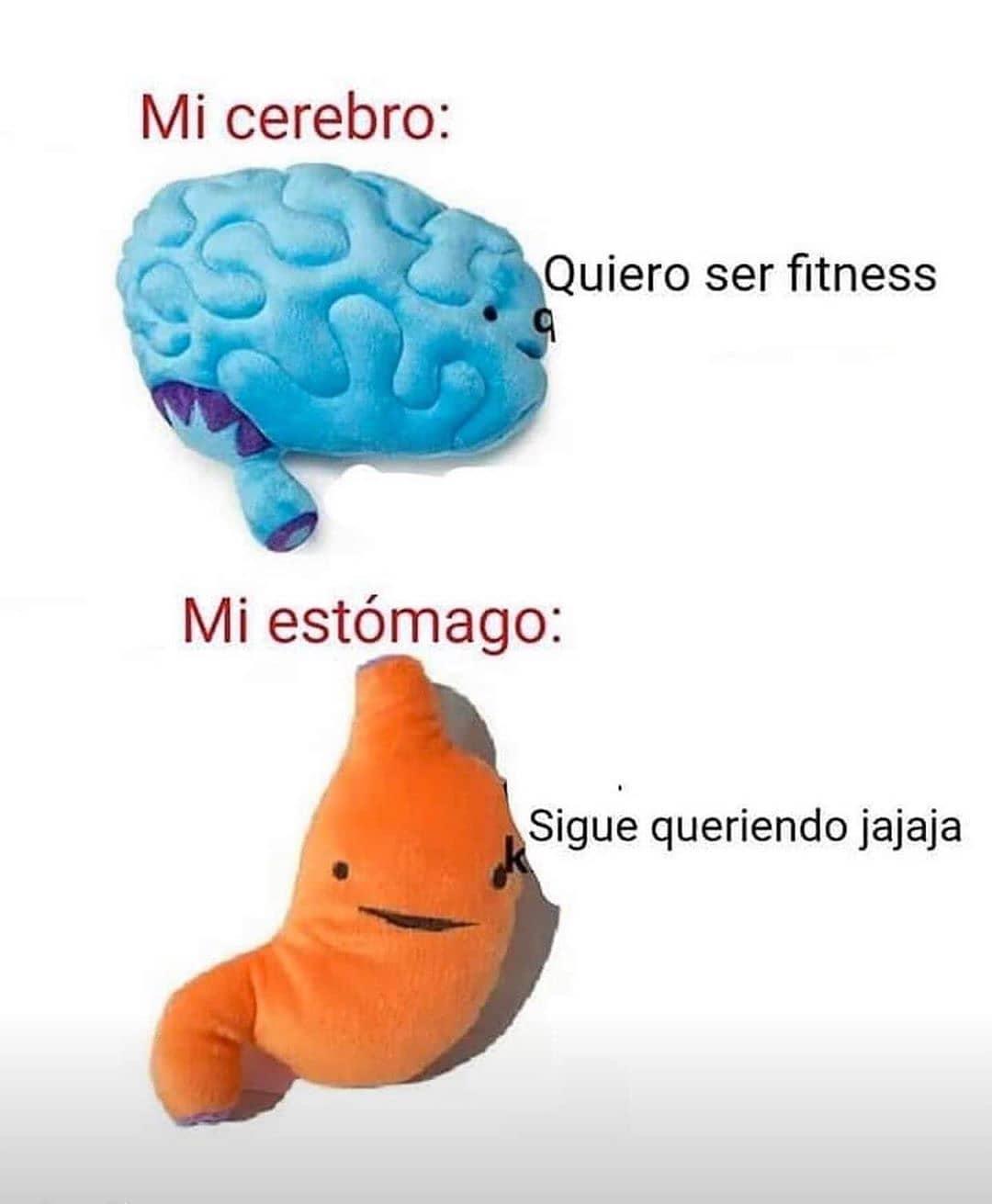 Mi cerebro: Quiero ser fitness.  Mi estómago: Sigue queriendo jajaja.