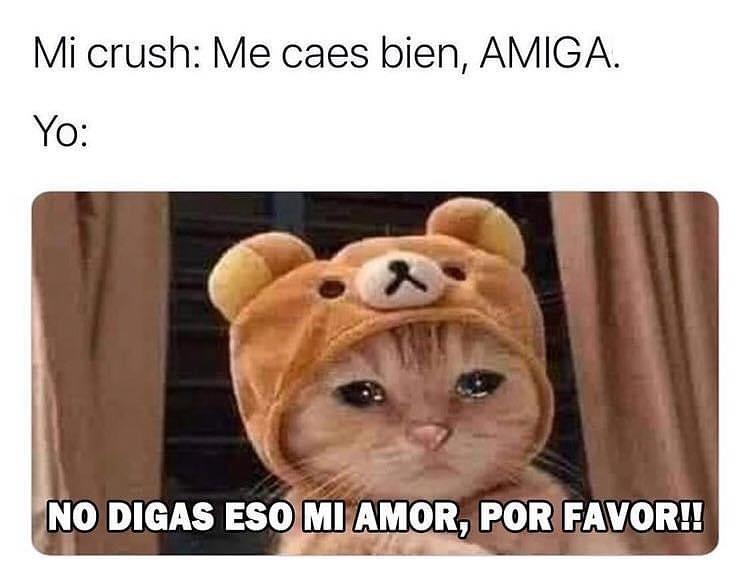 Mi crush: Me caes bien, amiga.  Yo: No digas eso mi amor, por favor!!