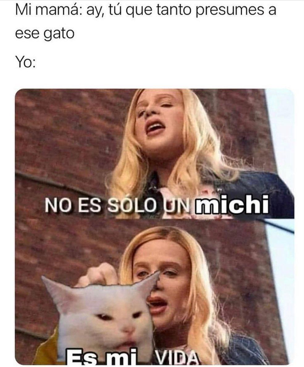 Mi mamá: Ay, tú que tanto presumes a ese gato.  Yo: No es solo un michi, es mi vida.