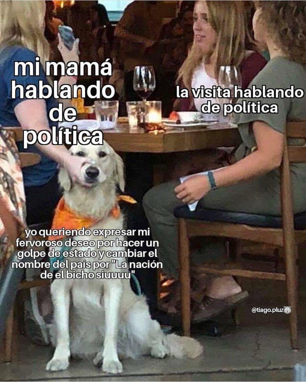 """Mi mamá hablando de política. La visita hablando de política.  Yo queriendo expresar mi fervoroso deseo por hacer un golpe de estado y cambiar el nombre del país por """"La nación de el bicho siuuuu""""."""