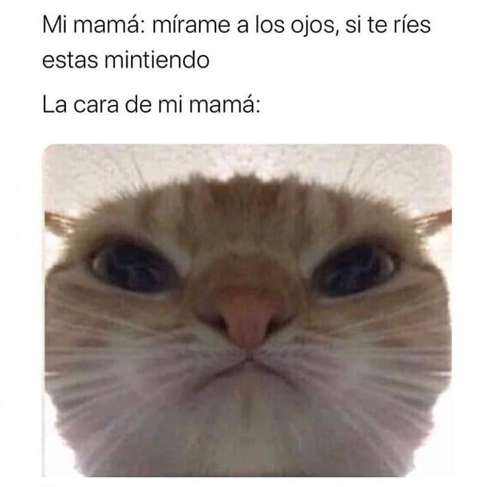 Mi mamá: mírame a los ojos, si te ríes estás mintiendo.  La cara de mi mamá: