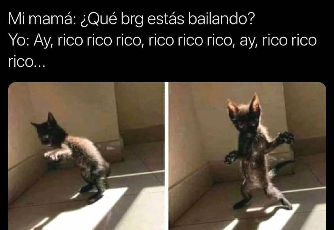Mi mamá: ¿Qué brg estás bailando? Yo: Ay, rico rico rico, rico rico rico, ay, rico rico rico...