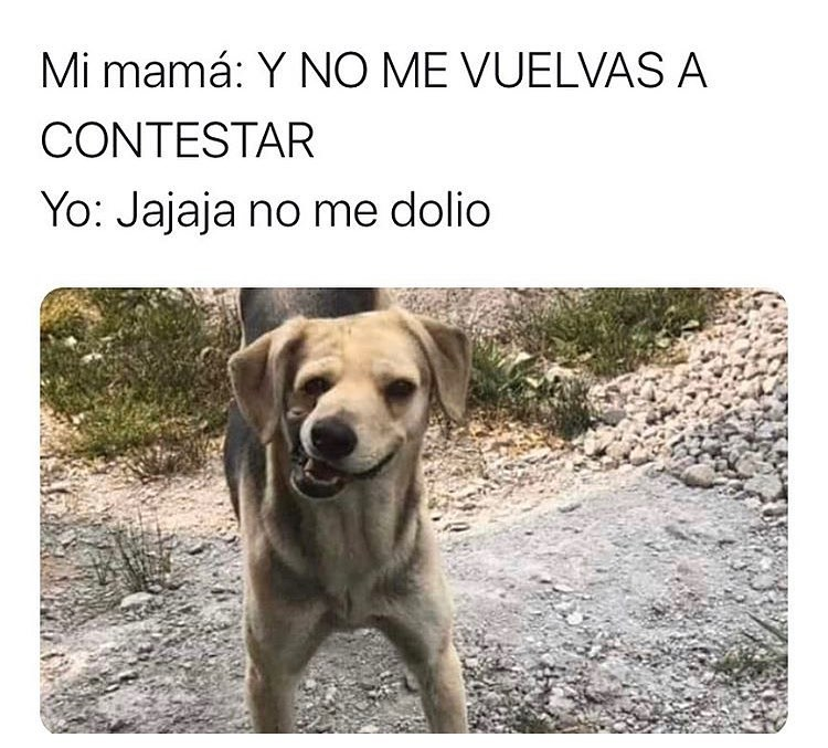 Mi mamá: Y no me vuelvas a contestar.  Yo: Jajaja no me dolió.