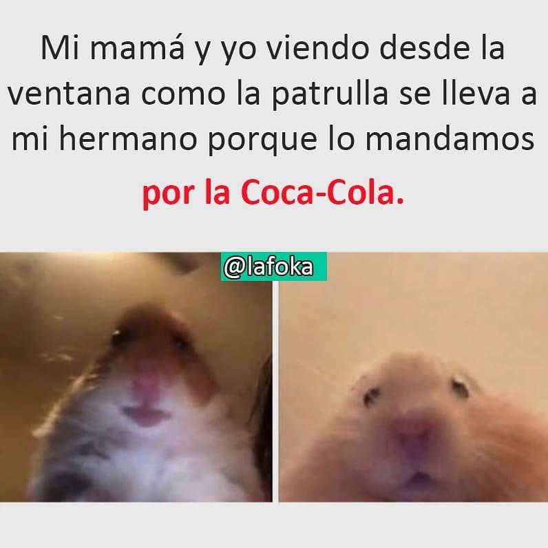 Mi mamá y yo viendo desde la ventana como la patrulla se lleva a mi hermano porque lo mandamos por la Coca-Cola.