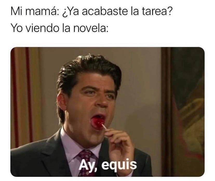 Mi mamá: ¿Ya acabaste la tarea?  Yo viendo la novela: Ay, equis.