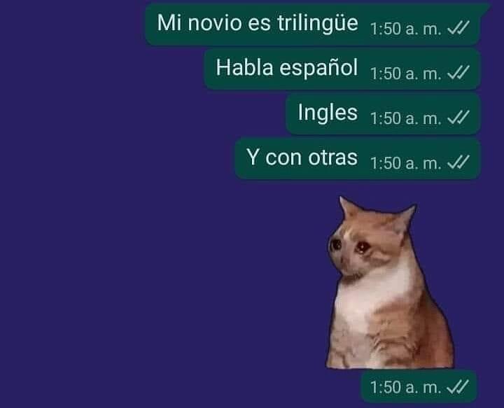 Mi novio es trilingüe. Habla español. Inglés. Y con otras.