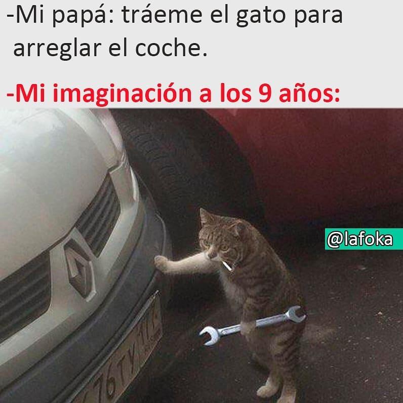 Mi papá: tráeme el gato para arreglar el coche.  Mi imaginación a los 9 años: