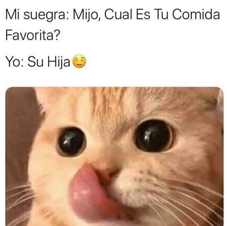 Mi suegra: Mijo, Cual Es Tu Comida Favorita?  Yo: Su Hija.